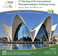 4th Meeting of the International Phytoplasmologist Working Group (IPWG). Valencia (Spain), September 8-12, 2019