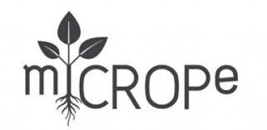 "Symposium ""Microbe-assisted crop production – opportunities, challenges and needs"" (miCROPe 2019), Vienna, Dec 2-5 2019"