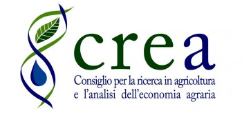 crea iniziative: collection of testimonies in memory of prof. michele stanca
